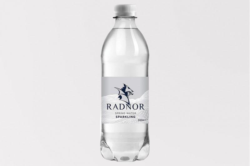 Radnor Sparkling Mineral Water 24x500ml